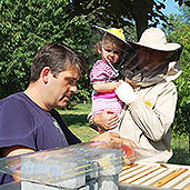 Education at the demonstration apiary